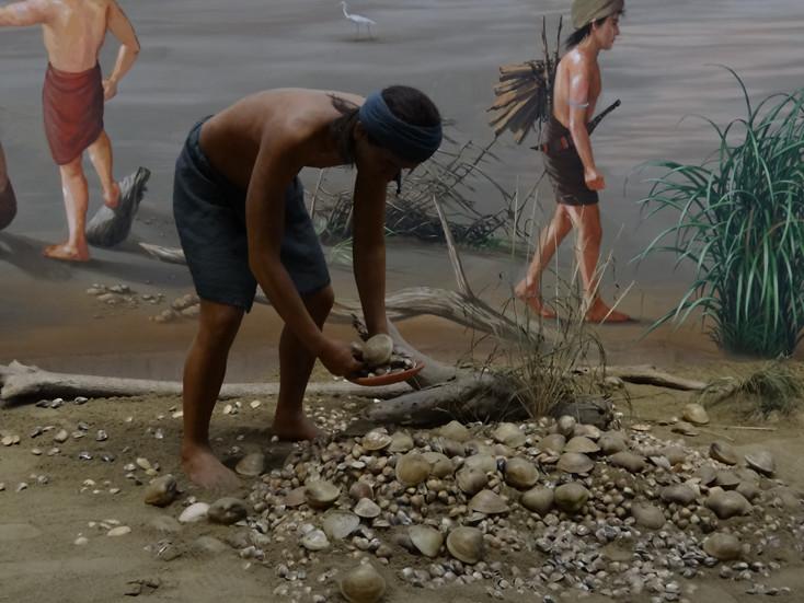 음식 : 십삼행 사람들은 쌀을 주식으로 사용했습니다. 벼농사 이외에도 산에서 사냥을 하고, 단수이 강변에서 물고기와 새우를 잡거나 조개를 채집했습니다(조개를 먹은 후 조개 껍질을 같은 곳에 버렸습니다. 고고학자들은 이를 조개 무덤(貝塚)라고 불렀습니다). 십삼행 사람들은 강, 바다, 산 등 풍부한 자원을 최대한 활용했습니다.
